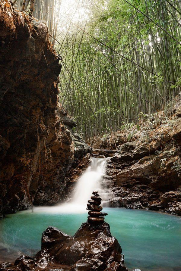 Zen Bamboo Balance by Davin Phelps