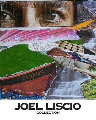 Catalog of Joel Liscio