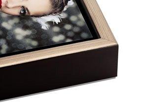 Silver Float Frame
